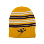 Freeze Thermal Beanie