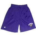 Purple Mesh Short